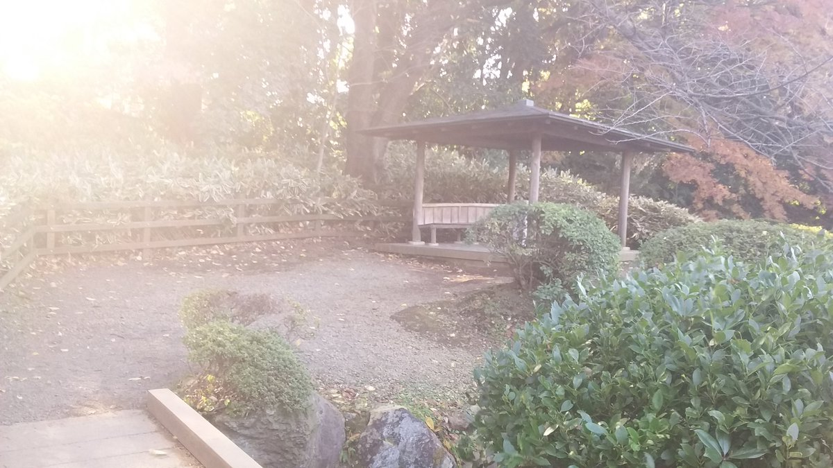 ここが……『秒速~』と同じ新海誠監督作品の『言の葉の庭』の、舞台。新宿駅から歩いて10分……新宿御苑の東屋です。