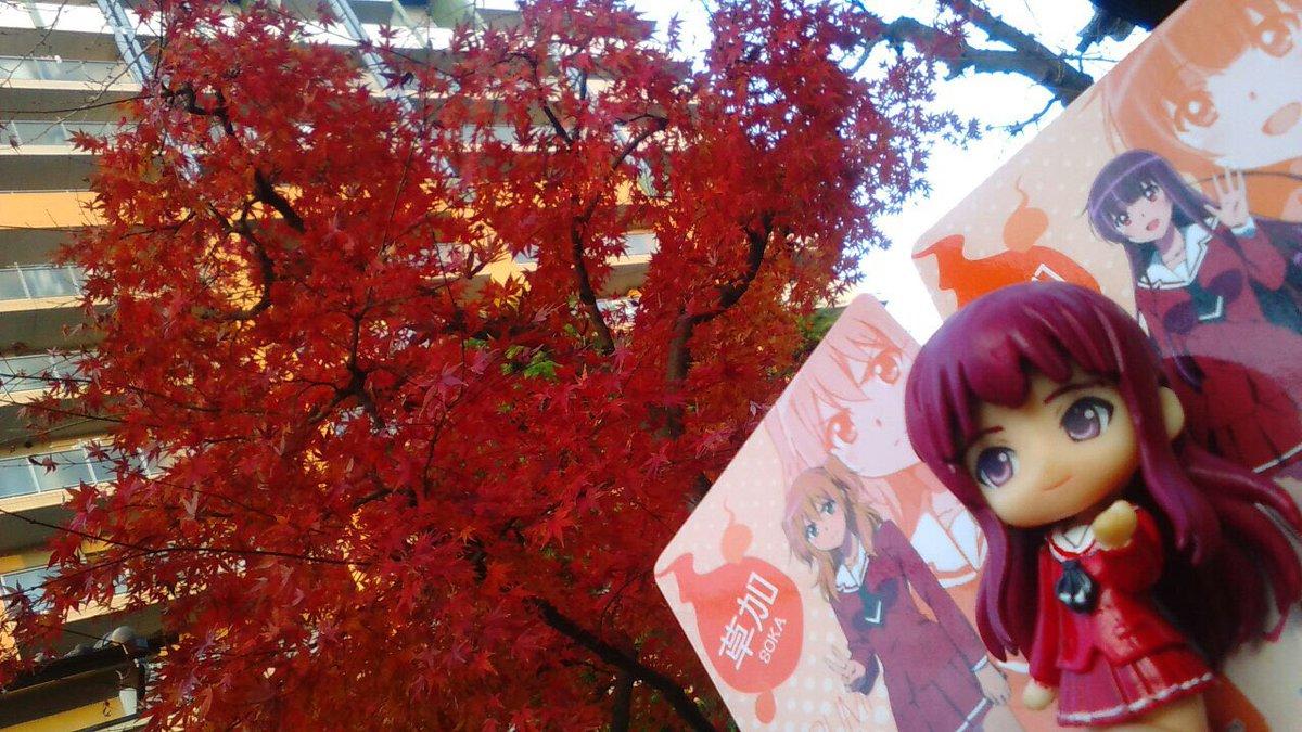 舞台めぐりセレクション【12月8日】紅葉前線シリーズ!〜草加〜---ようやくながらグルメカードも手に入れて、 色々あった