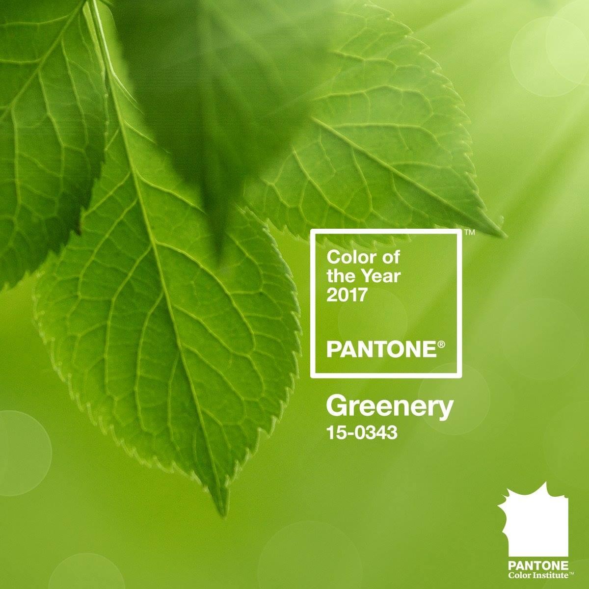 Pantone 2017'nin rengini açıkladı: Greenery! Bu yıl bolca yeşillikten bahsedeceğiz. #Pantone #Coloroftheyear #Greenery https://t.co/p02Rlu79iE