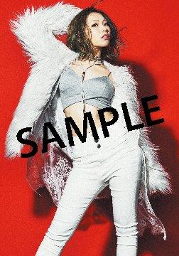 1/25発売、ZAQさんニューシングル『Last Proof』オリ特:ブロマイド絵柄公開! 表題曲は2月公開『劇場版 ト