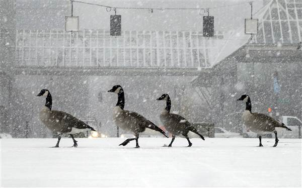 Winter weather wallops northwest while icy cold freezes plains- and more is on the way