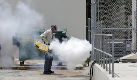 Miami's South Beach is no longer a Zika zone