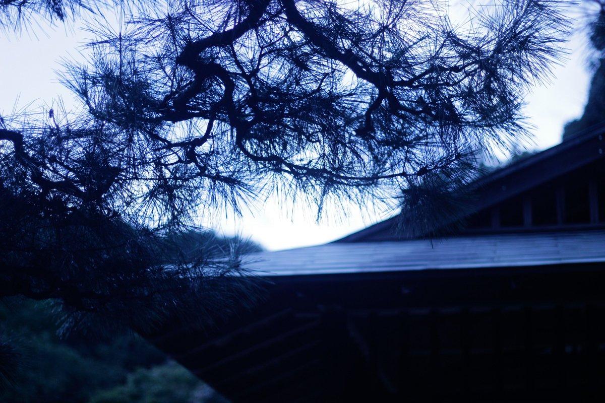 新宿御苑での「言の葉の庭」風、未UP分