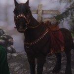 スカイリム最速かもしれない馬、サンダーボルトさんは‥