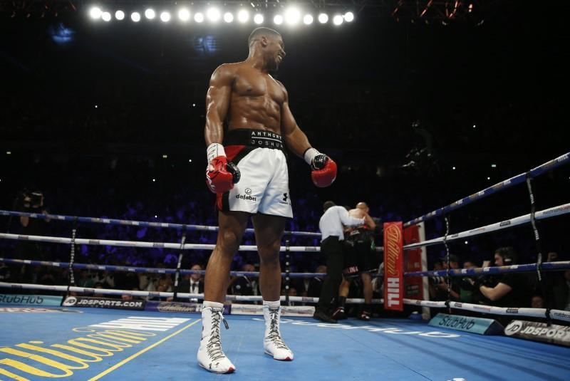 Joshua to fight Klitschko in April after easy defence