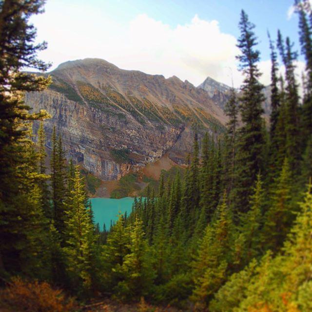 P4 Entre le lac Louise et le lac Agnes, la vue est plutôt sympa ! 🇨🇦 @Explorezsansfin @travelalberta #Battlephoto https://t.co/jdbPLQwLBT