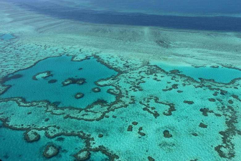 Japanese tourist dies on Great Barrier Reef