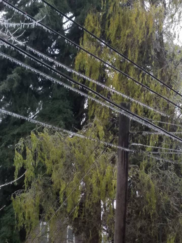 Approximately 11,000 EWEB customers are without power as of 9 p.m. #LiveonKMTR https://t.co/XDcEMeIawa https://t.co/J9zjiINVkQ
