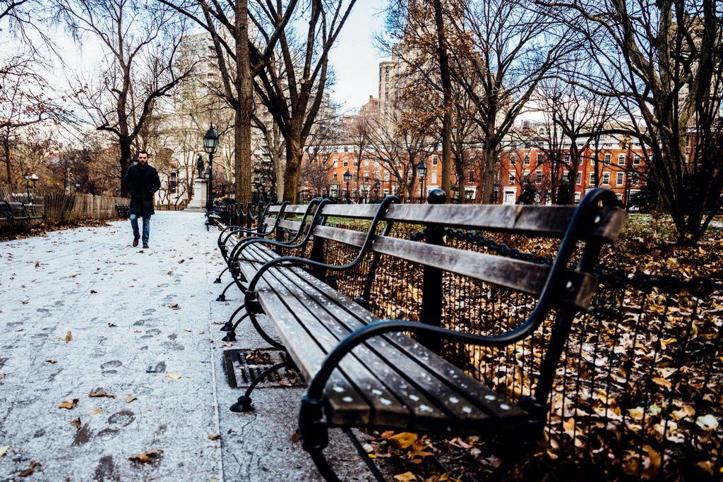 So this just happened. ❄️⛄️🌳 #NYUvibe https://t.co/ZUXhw77q0K