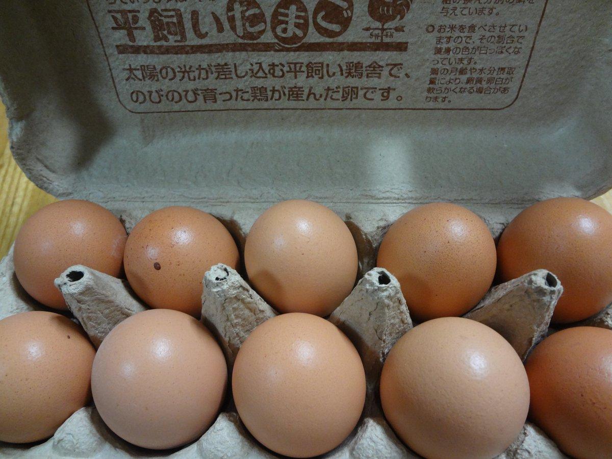 test ツイッターメディア - らでぃっしゅぼーやから卵届いた! https://t.co/Tuq6PYkf0e