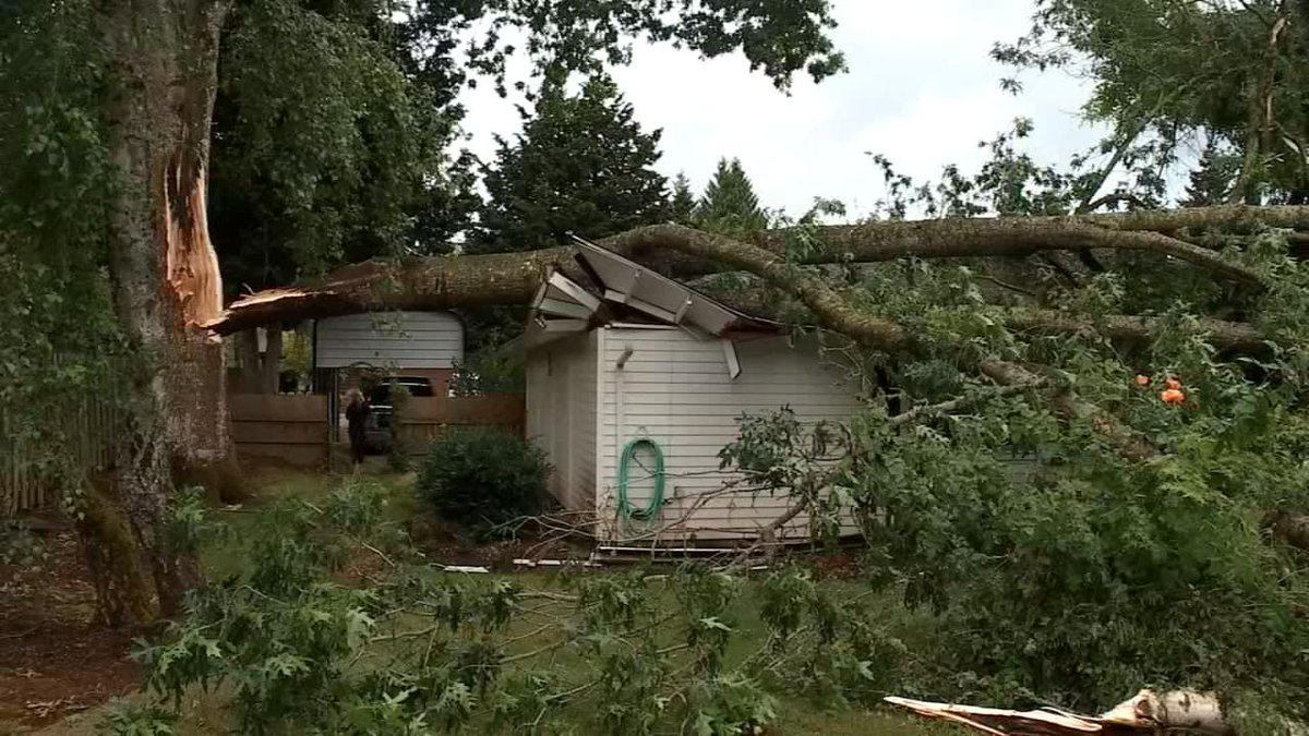 'A loud ripping boom': Tree smashes onto Salem home, no injuries | News | kptv.com