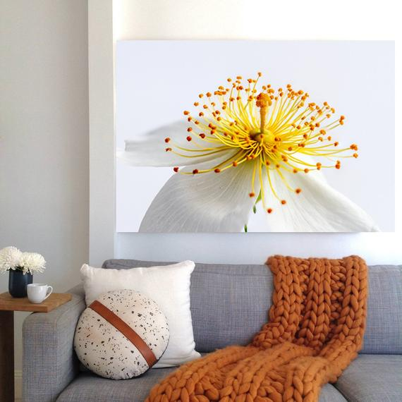 White Flower Photo Print  Printable Art Nature Print White | Etsy
