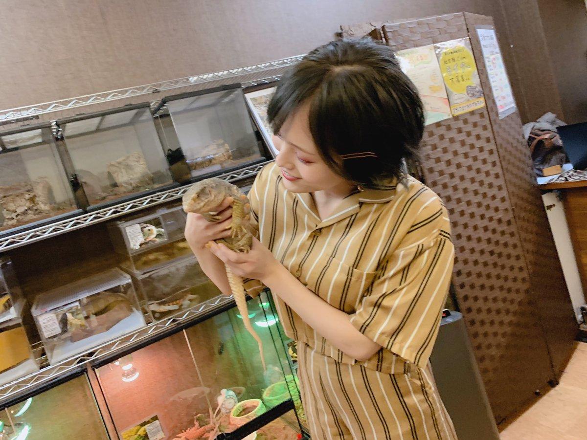 山本彩 ブラックジャック ハゲ ねん 店ロックスターに関連した画像-02