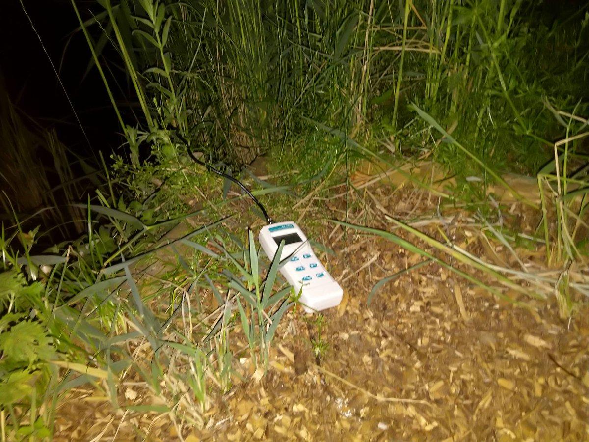 The night shift begins..   #RumBridgeFisheries #carpfishing #Suffolk https://t.co/uNJeEwXbbx