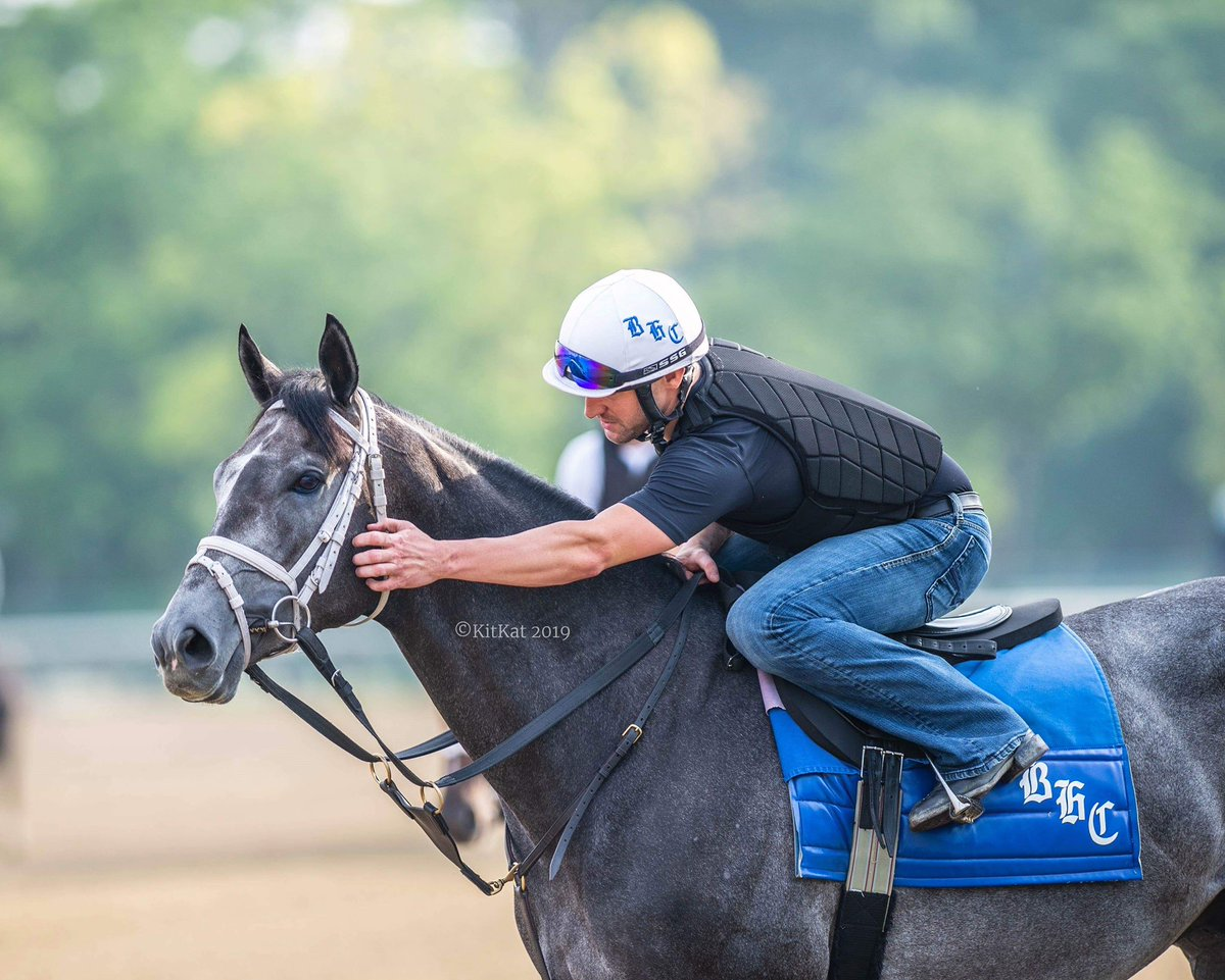 test Twitter Media - 2yo purchase Pole Setter (3yo Take Charge Indy) looks to make it 3 in a row today in the $100k Manila Stakes @TheNYRA coming off a nice win in the Paradise Creek S. for @bradcoxracing another great 📸 from @Kitkat8298 https://t.co/NJHjmG5t7X