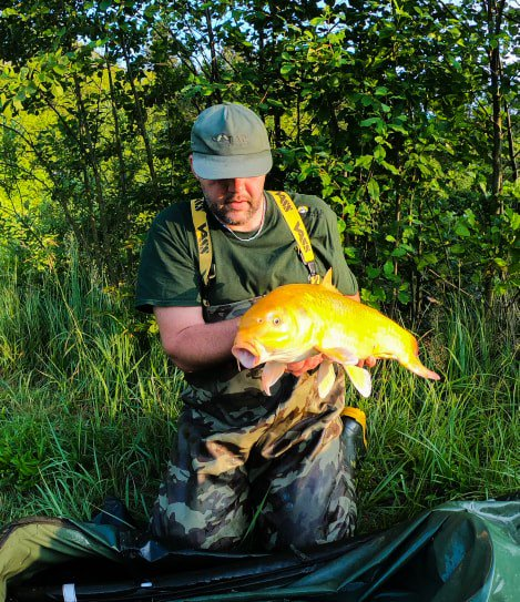 Goldfish 🐠🐠 #<b>Vasswaders</b> #camouflage #carpfishing https://t.co/5ZOqoktHQr