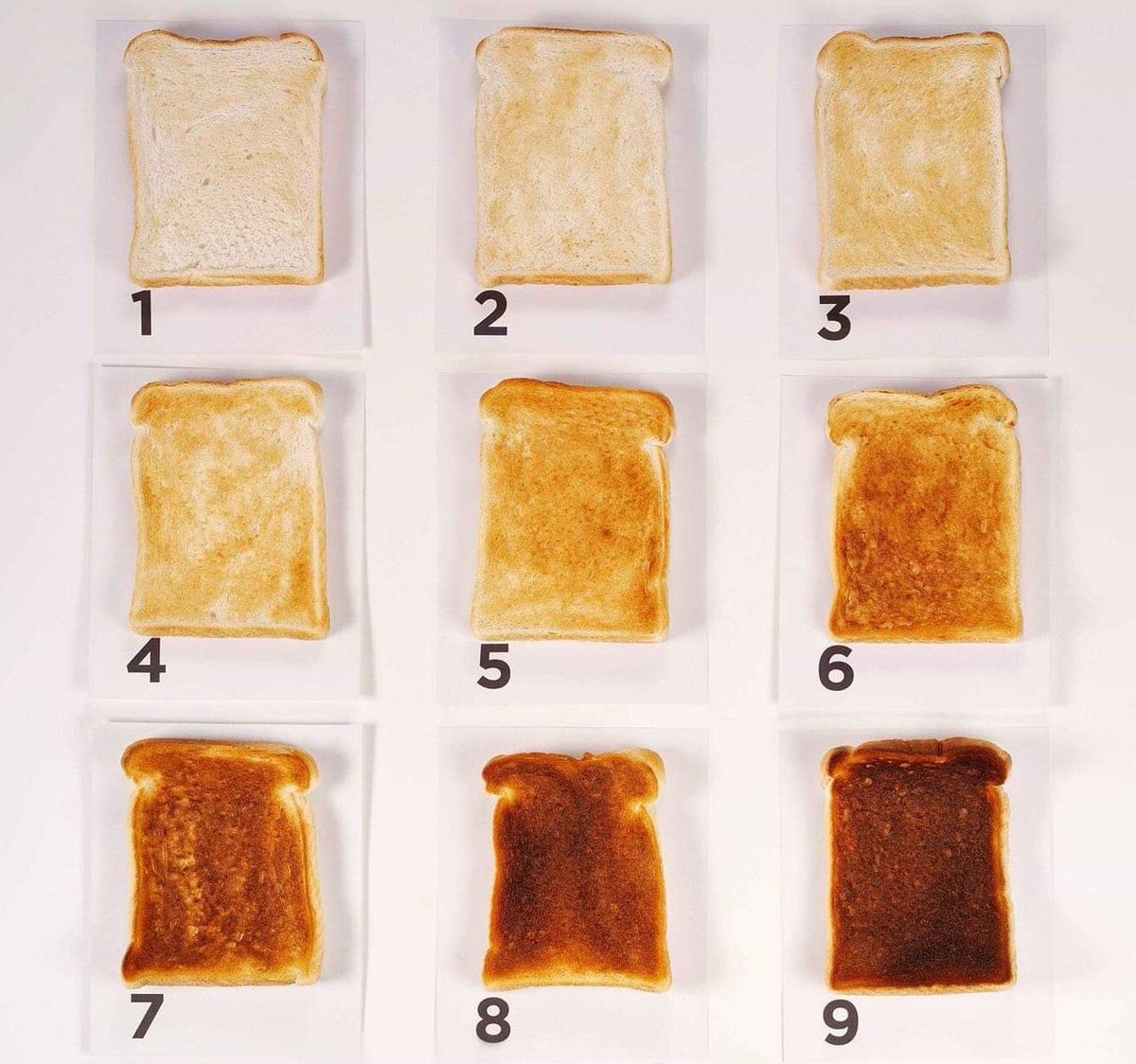 Best way to have your toast?  I'm going with 4 or 5 ????????♀️  #RandomBreadRelatedTweet https://t.co/JsHIqNVVko