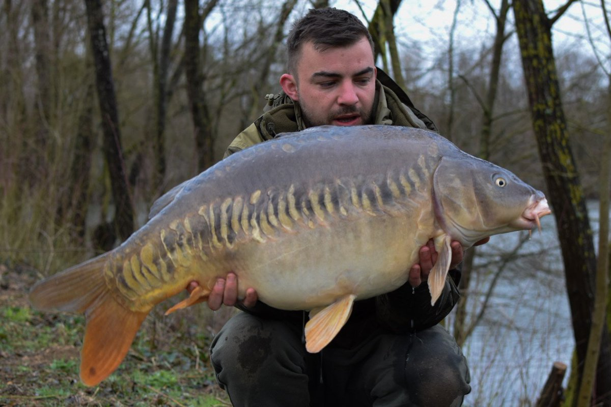 Juvanze lakes scaley @<b>Soniksports</b> #carpfishing https://t.co/AlNxtzMi7C