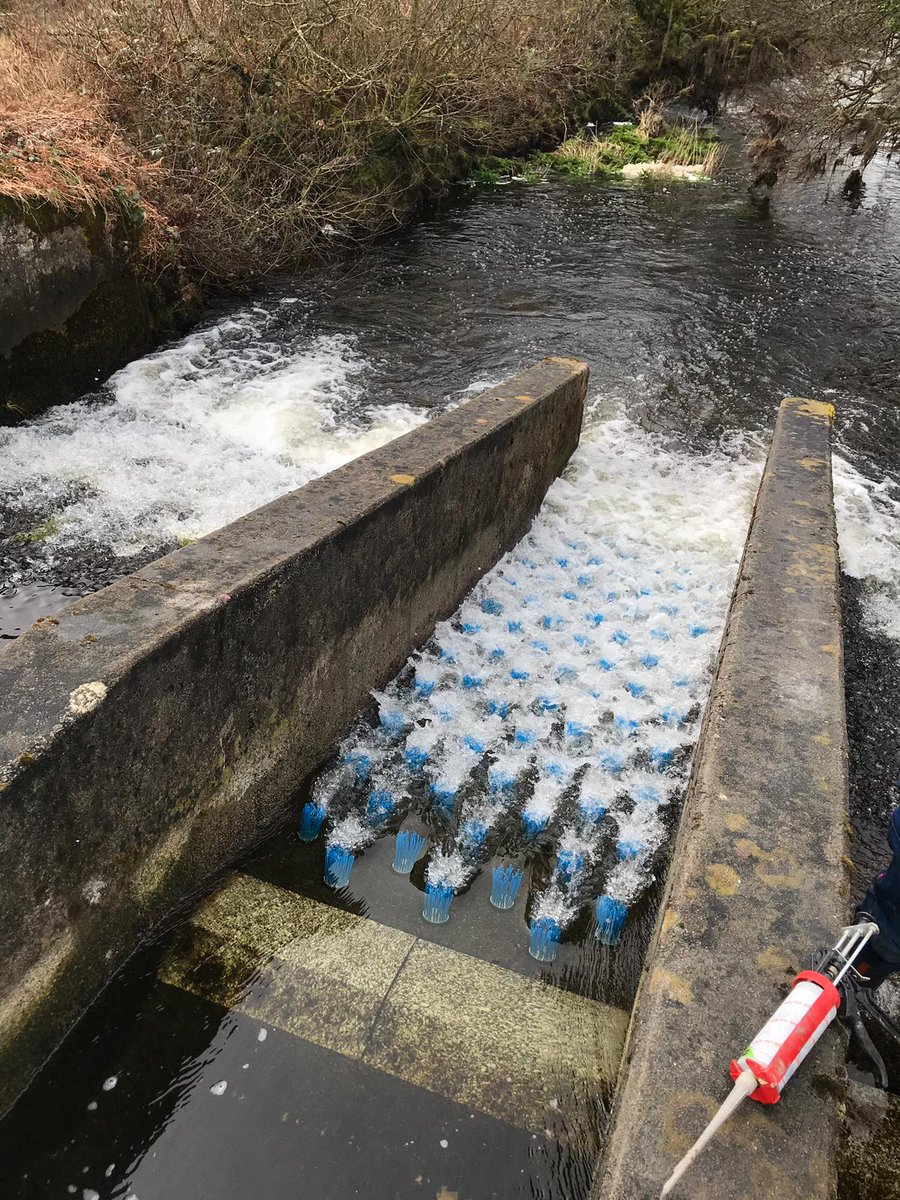 test Twitter Media - Fish brush installed on the De Lank near Bodmin. This is part of the work being conducted by Daniella Montali-Ashworth and the Environment Agency. Daniella is one of our CDT SIS and @UoS_ICER students now working for the Environment Agency. https://t.co/23l5PRlJKw