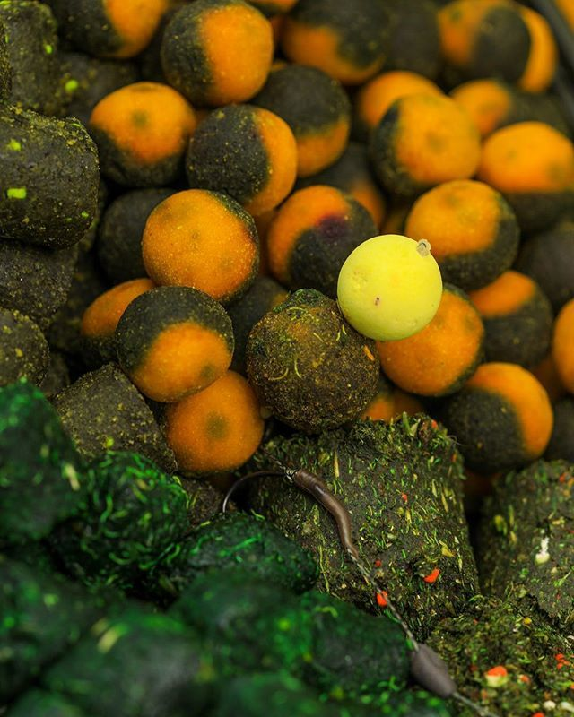 Trusty mixture 👍 #nutricacid #duoboilies #lkbaits #carpfishing#fishing#angling #<b>Karpfen</b