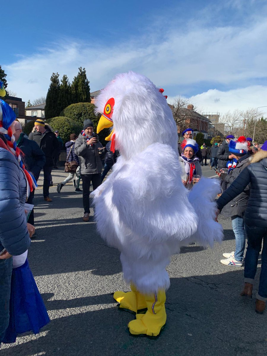 Why did the chicken cross the road?🐓🤣🤣 #IREvFRA #TeamOfUs Everyone In https://t.co/OLoMzllDIu