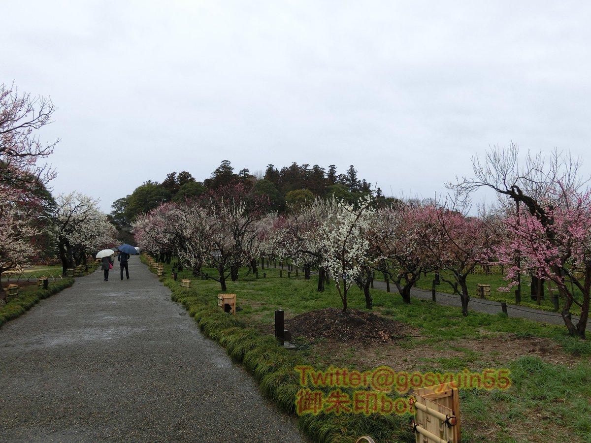 test ツイッターメディア - 茨城県水戸市鎮座『常磐神社』と摂社『東湖神社』の御朱印。偕楽園等で行われる「水戸の梅まつり」期間中は御朱印に特別な印や、春告守等が頒布。期間中、有名な名所なので混雑に注意が必要だが、その季節、梅が好きな人には最高の場所だ。 https://t.co/SGILO5Lul3