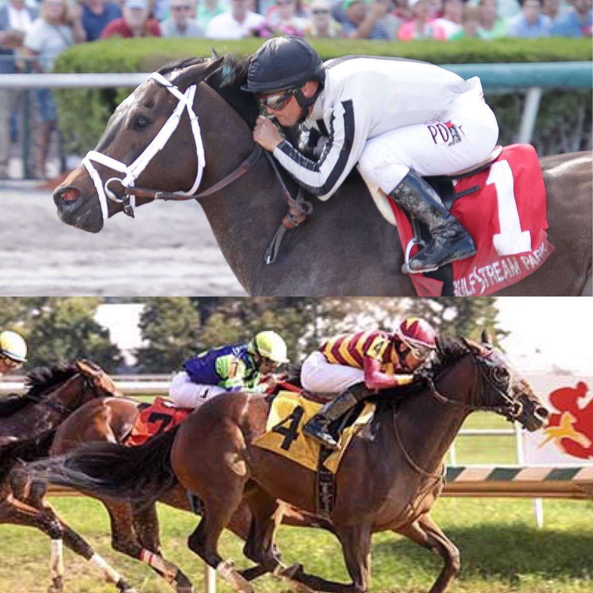test Twitter Media - BSW Private Purchase (IVY BELL) won the G2 Inside Information 1 year ago. A great day for Mathis Family and Madaket Stables with @MaggieSweetTAP. Today we have CAIRENN going in the same race, for Heider Family, Madaket, Kisber @GrahamMotion. Thanks to all the great connections. https://t.co/S15VRIrsye