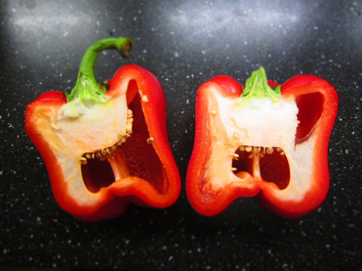 Red peppers always look like they're screaming.  Just an observation.  https://t.co/vGjqnIpUrK https://t.co/j3gp4GBQiR