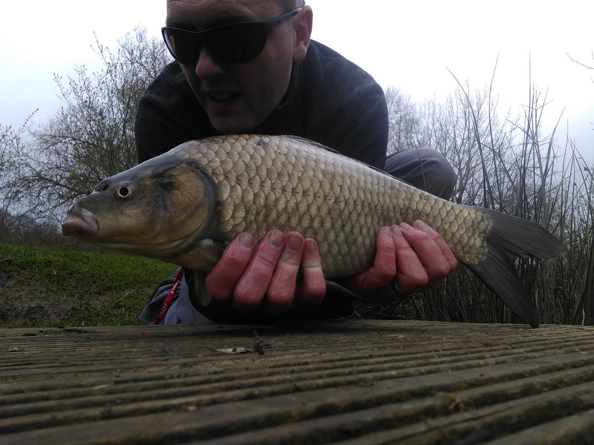 Fishing at Viaduct fishery.  New blog is up at https://t.co/ehKF0E8LeY @viaductfishery  @well<b>Carp