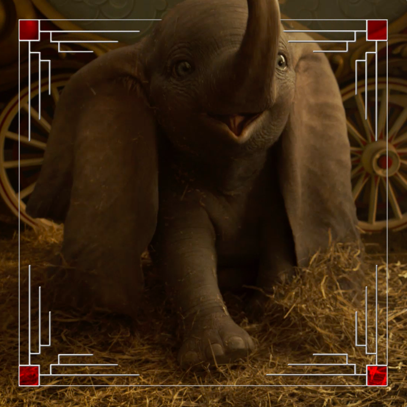 RT @Dumbo: The show you know is just the beginning. Get tickets now to experience Disney's #Dumbo in 3D on March 29. https://t.co/sejBAgGIdT