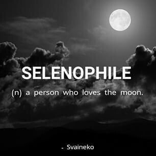 #FullMoonInLibra #Supermoon2019 #wednesdaythoughts I guess I'm a Selenophile... https://t.co/yJSLYoaog2