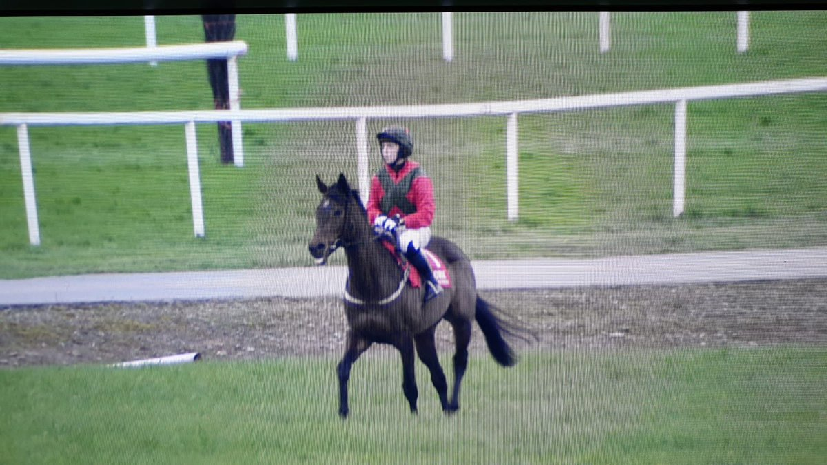 test Twitter Media - Congrats to our very own @DoylerNiamh who rode @corkracecourse today - delighted you'll be back to the office in one piece tomorrow 😉🐎👍🏻 https://t.co/TKh9EL5zG0