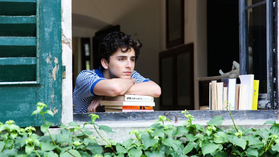 Where will the sequel to CallMeByYourName pick up?