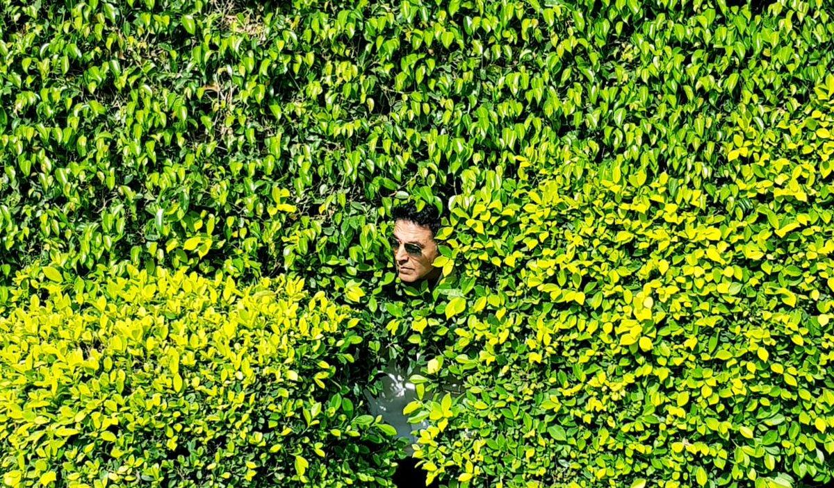 RT @akshaykumar: #Kesari has released... So I'm hiding in the bushes 😉 Catch me if you can in cinemas Worldwide🧡 https://t.co/xH0A7YwuXr