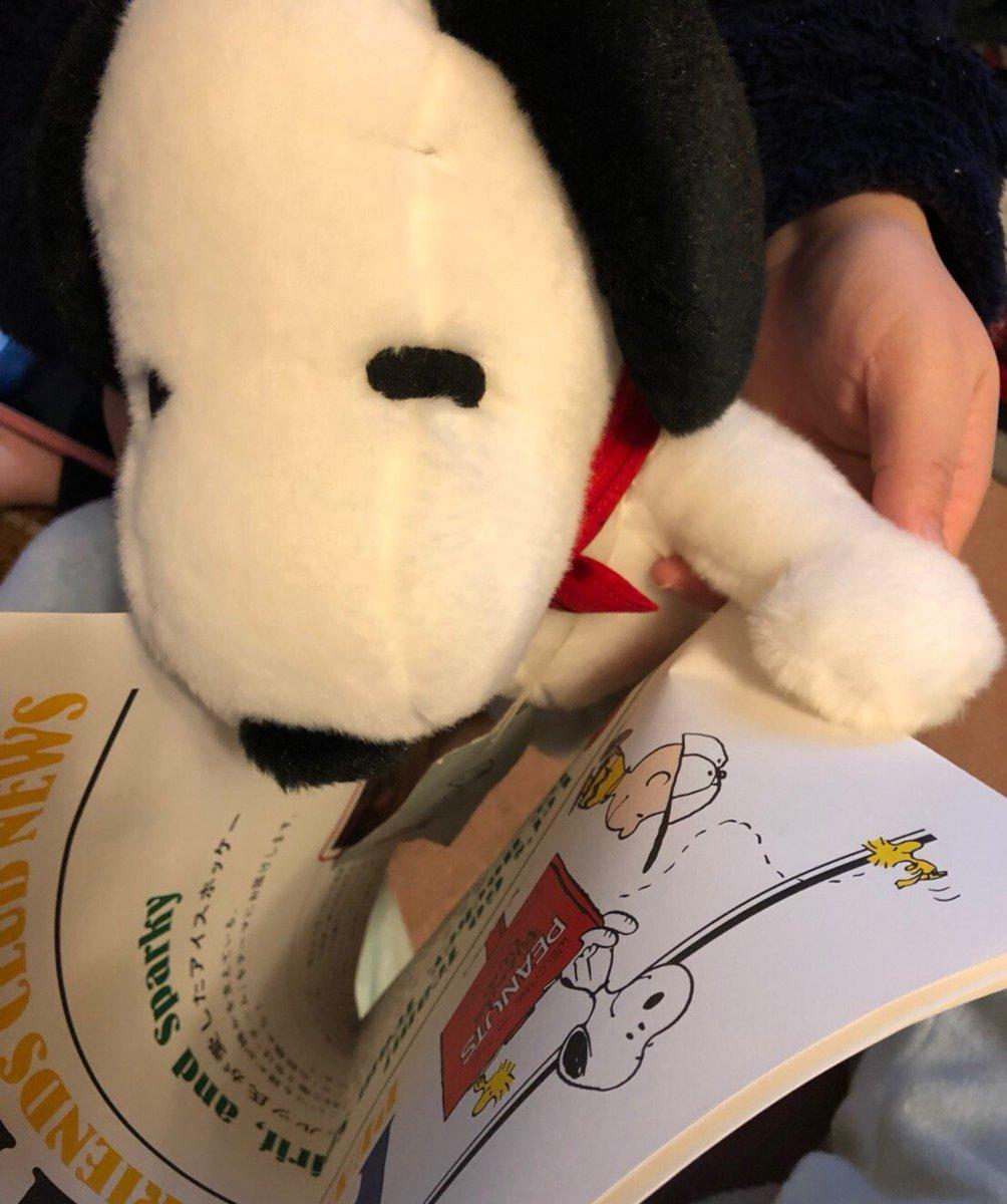 test ツイッターメディア - #PEANUTSFRIENDSCLUB スヌーピーファンクラブ特典で届いたバンダナを、スヌーピーミュージアムで買った子に装着( ・ ´`(●)かわいいかわいい♡ https://t.co/M1RbBgU8ec