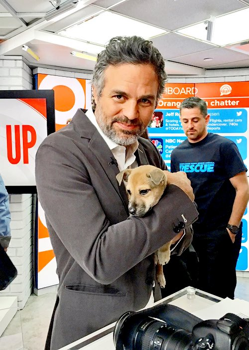 RT @MarkRuffalo: Happy #NationalPuppyDay from me and this little guy ???? https://t.co/91IZekVHVl