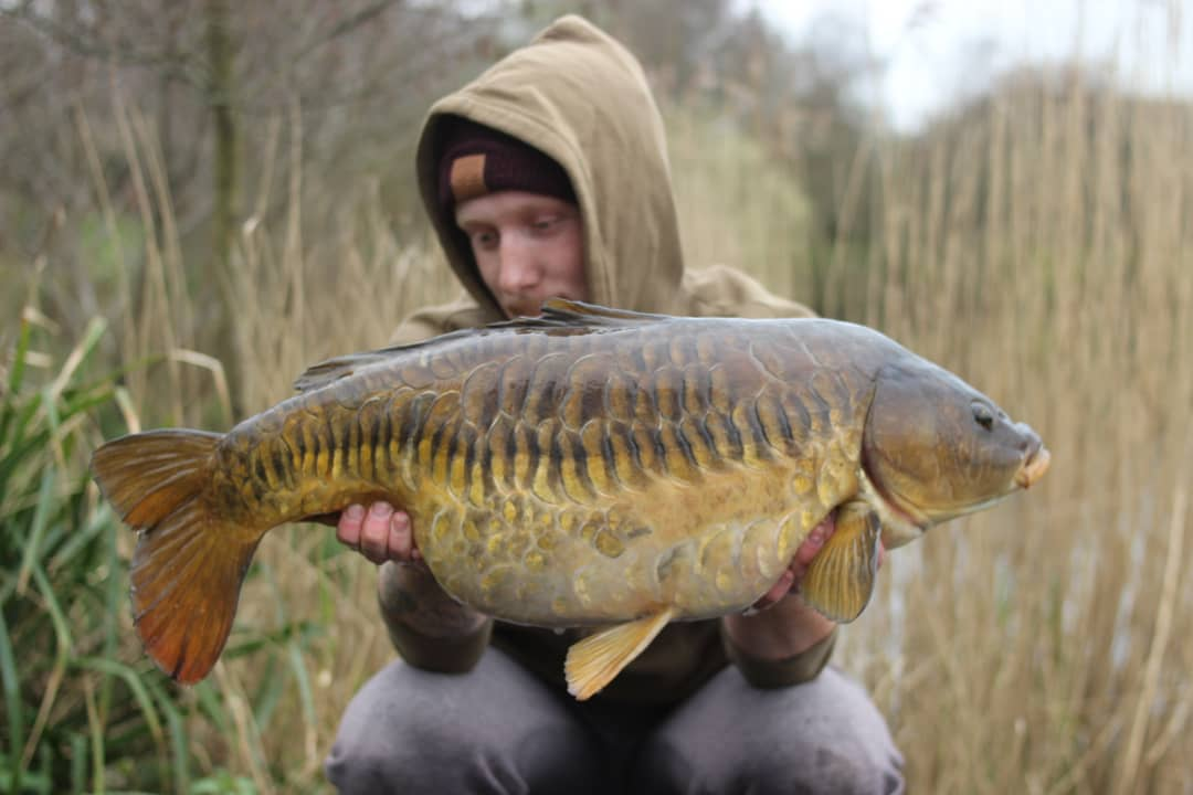 Who doesn't love a scaley one!! . . . . #carpfishing #angling #wofte #espcarpgear #onthebeatentrack
