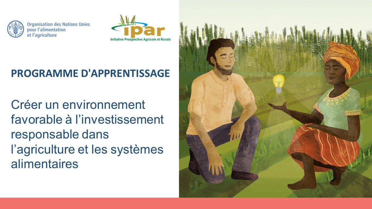 test Twitter Media - #formation de Responsables politiques des pays du bassin du fleuve Sénégal :  #Guinee🇬🇳 #Mali🇲🇱 #Mauritanie🇲🇷 #Senegal🇸🇳 Sur: ➡️Créer un environnement favorable aux #investissements #responsables dans l'#agriculture et les #systèmes #alimentaires @FaoSenegal & @IPAR_ThinkTank https://t.co/xqNigAKfuM