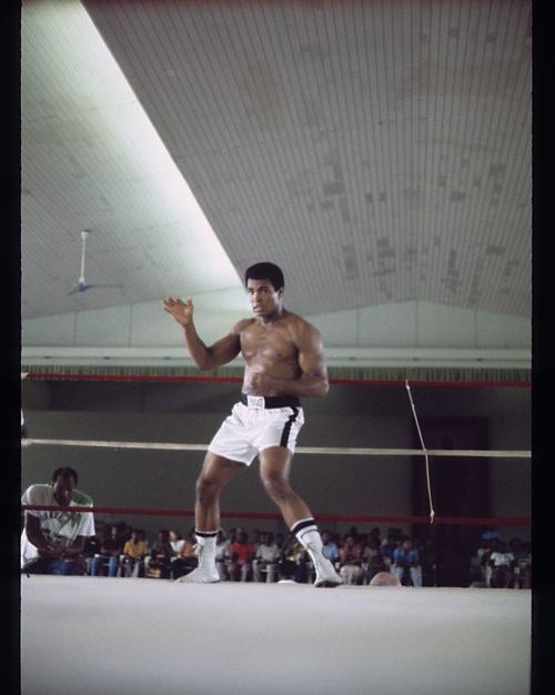 The real dreamer is the one who dreams about the impossible #justdoit #MuhammadAli https://t.co/6AjBWFu97L