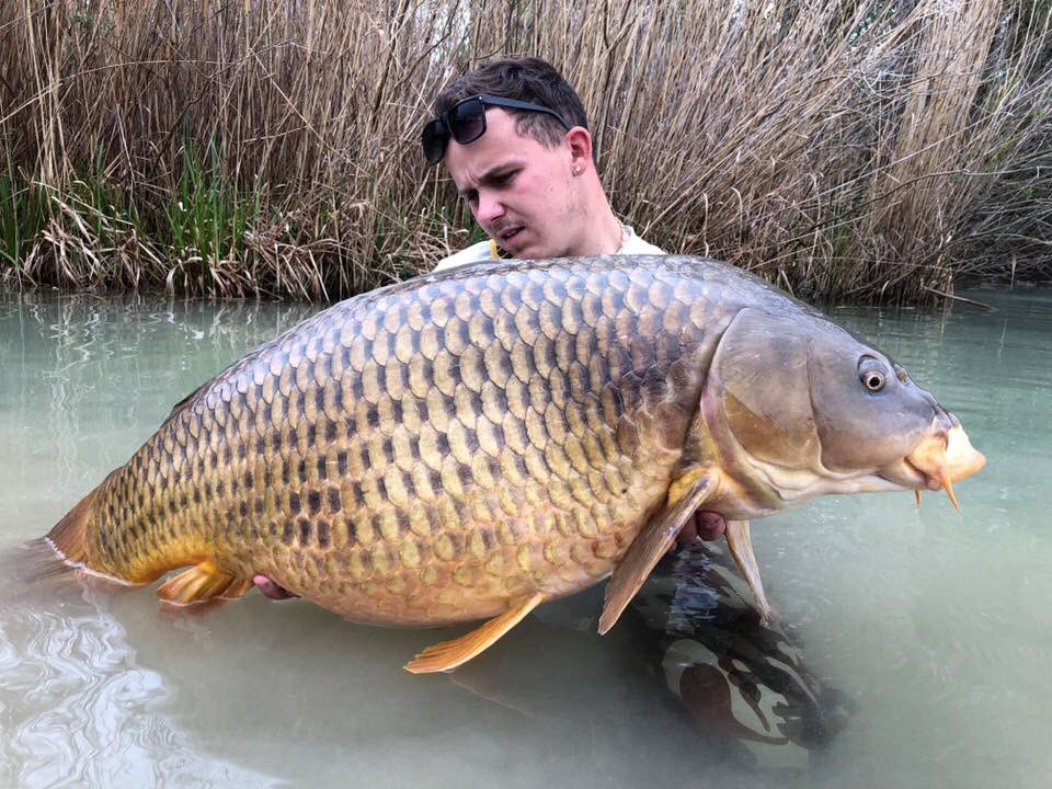 Simplicity pays off with this big common! 😉💪 #fishinglife #carpfishing #<b>Vasswaders</b> http