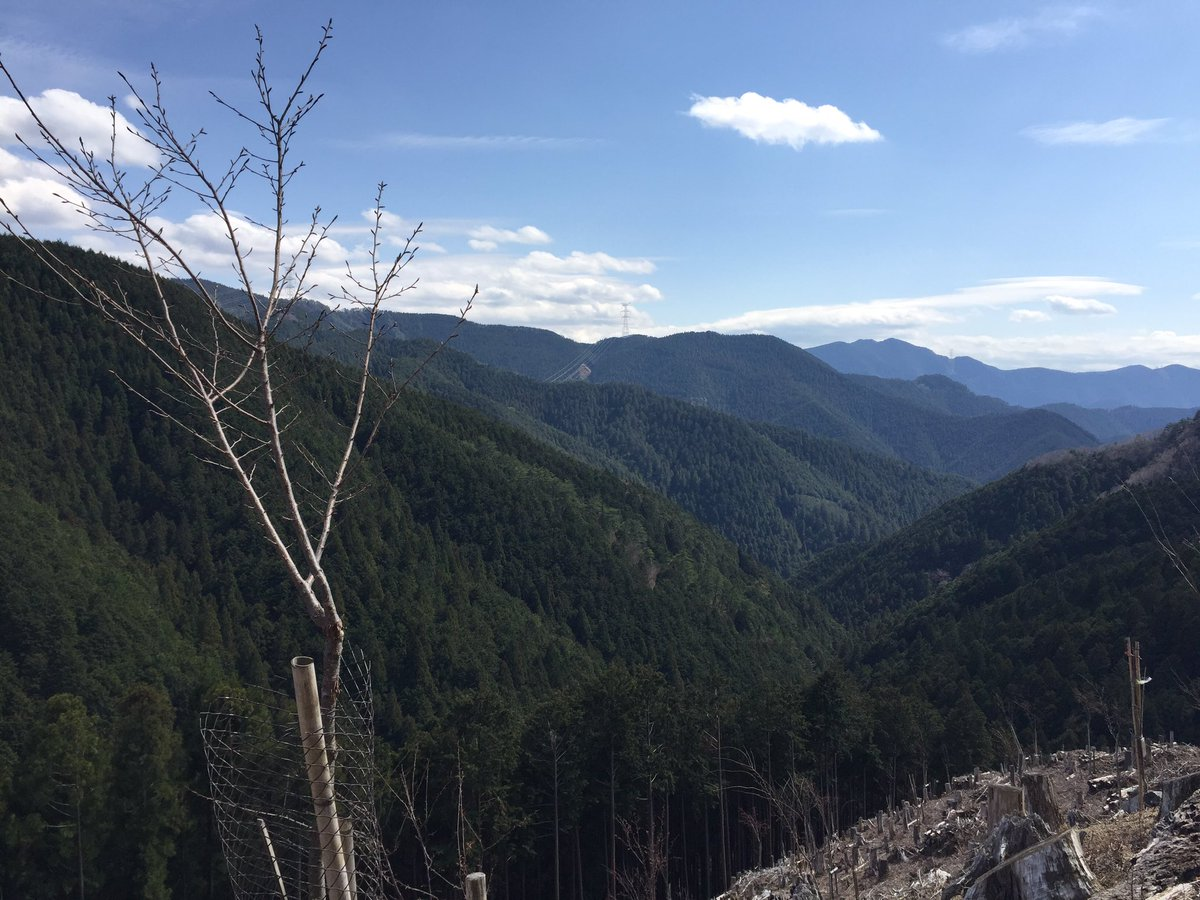 test ツイッターメディア - 吉野山ウォーク🌸奈良検定ソムリエ夫婦の案内で奥千本の一番奥の西行庵まで、7時間22000歩歩きました。一番高いところで標高800メートルくらい。お天気も良く桜も見頃🌸おしゃべりも楽しく最高の1日でした🙆♀️ が、、、足が、、、😨 https://t.co/1GAV8IM5dA