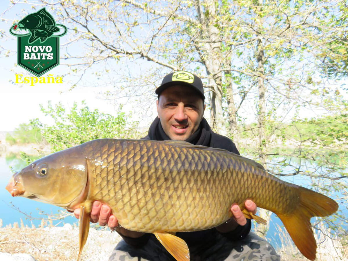 Daniel #novobaitsespañatester<b>Team</b> #novobaits  #oceanfresh  #carpfishingespaña  #carpfishing