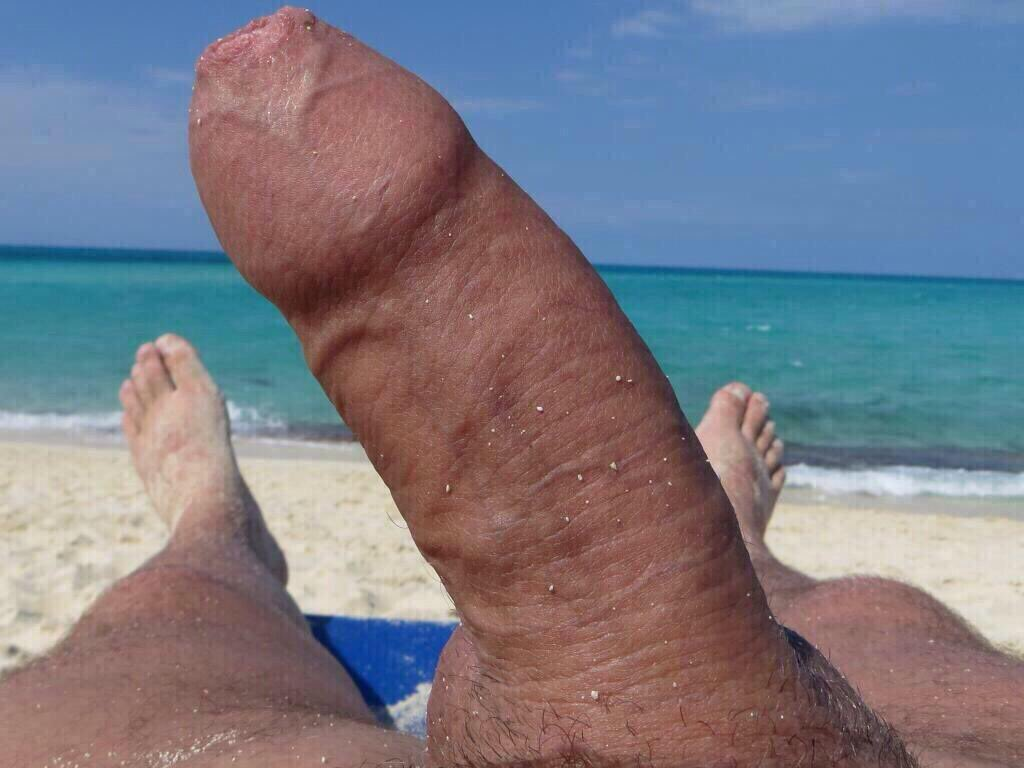 RT @HaliGay: My Cock on a nude beach https://t.co/WgzybZeKBJ