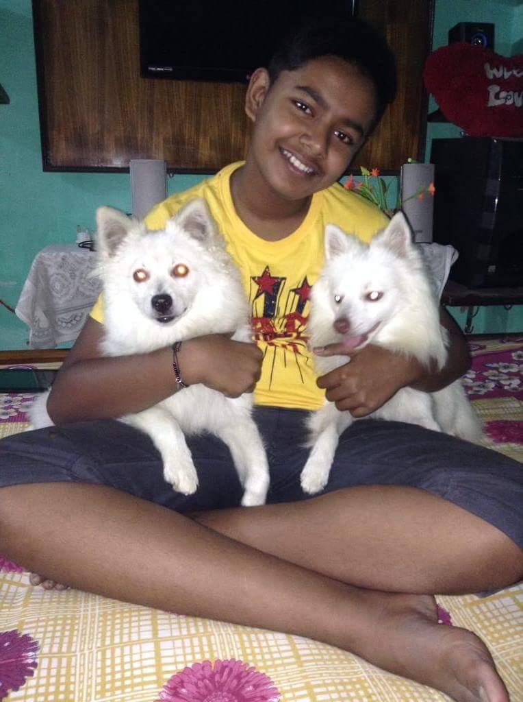 RT @AlexMondal7: @LanaWWE Ya can trust dog but not human(my pic when I was 10) https://t.co/XAc2l8mb64