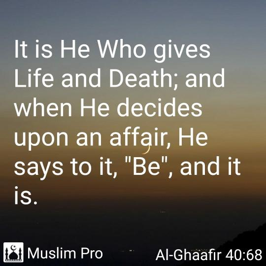 Sharing this verse from the Holy Quran #muslimpro https://t.co/YNhsy0Fmt7 https://t.co/au94xEBYg5
