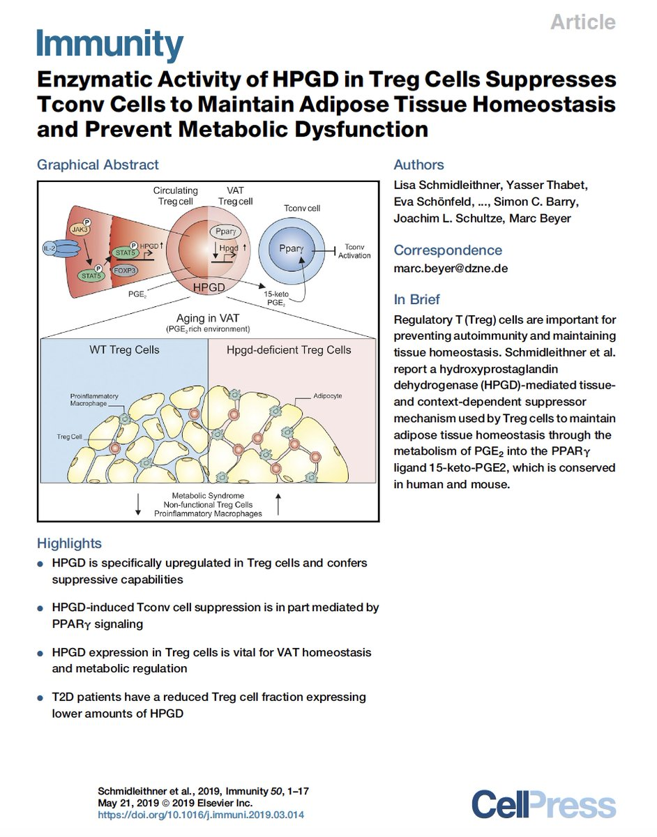 test Twitter Media - Abdominal/visceral fat is a pro-inflammatory reservoir, increasing the risk of heart disease and #diabetes. Now we're learning about the role of regulatory T cells (Tregs) specifically targeting fat tissue: https://t.co/xJMfWtsk8a @ImmunityCP @CellCellPress #T2D by @DZNE_en https://t.co/TFfFlRLk13