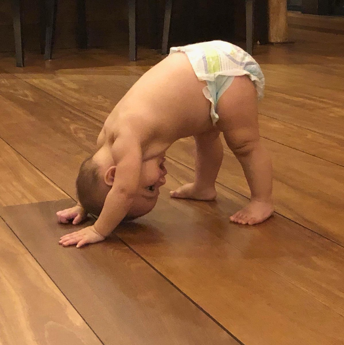 Yoga baby!! Where did he learn this? ???????????? https://t.co/QE7nIASet4