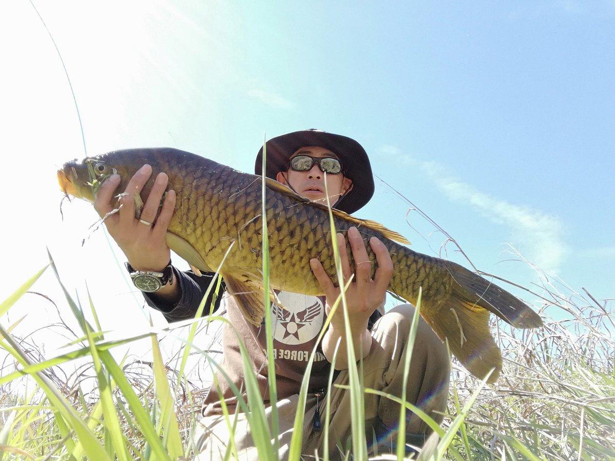 本日!2種目達成ー!! #<b>Bassfishing</b> #blackbass  #carp #carpfishing #鯉釣り  #恋
