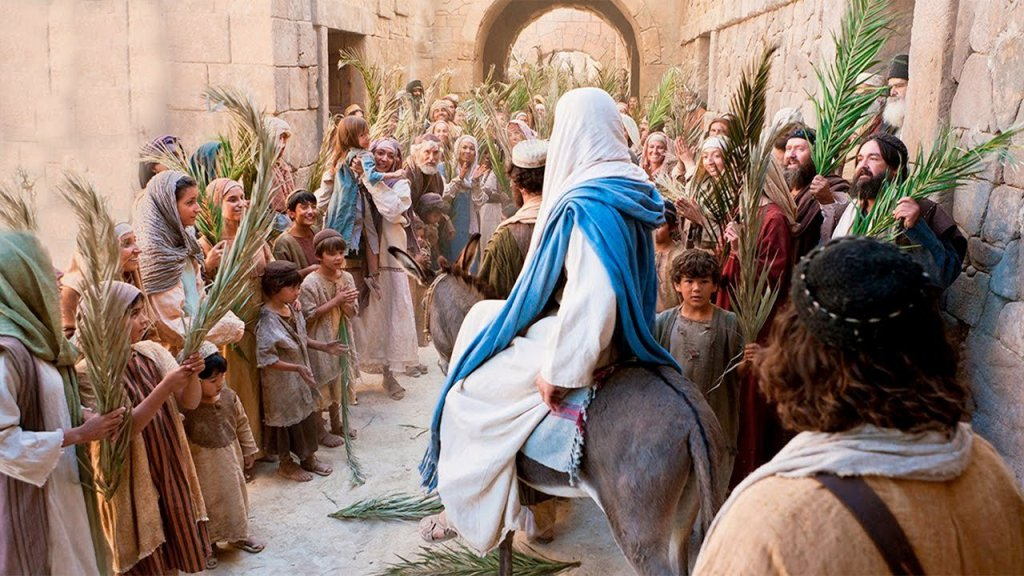 test Twitter Media - THE PALM SUNDAY https://t.co/nuMT9NCjfP https://t.co/hdqwOU2ArG