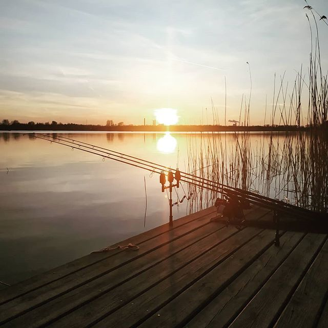 Waiting for the big one. Let's go! 20kg + carpa. #dynamitebaits #<b>Sunset</b> #carpfishing https://